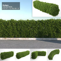 Hedges Collection (Scatterable)