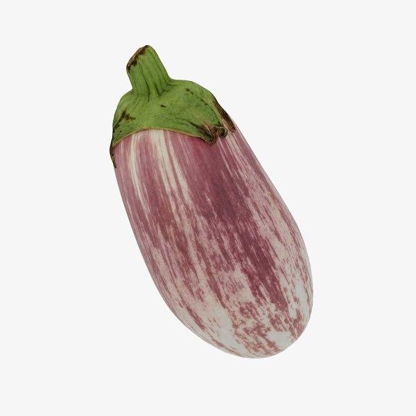 aubergine eggplant 3D model