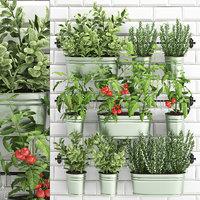 3D model garden decorative plants kitchen