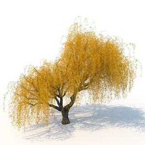 nature tree flora 3D