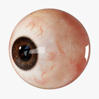 3D realistic human eye