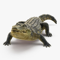 crocodile eating animal rigged model