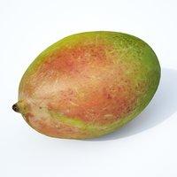 mango fruit 3D model