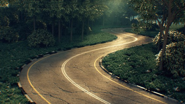 forest road tarmac 3D model