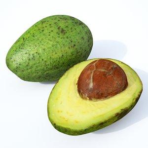 avocado fruit model