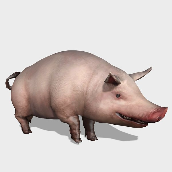 pig animations 3D model