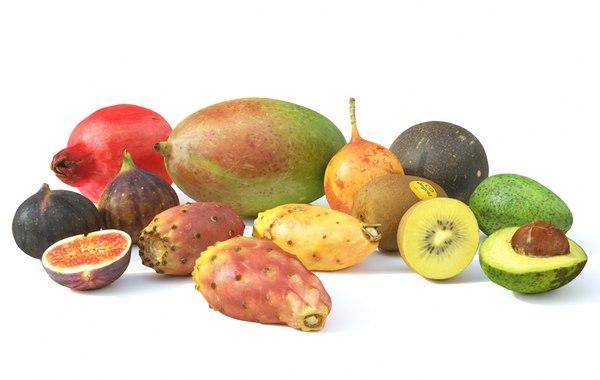 3D set exotic fruit model