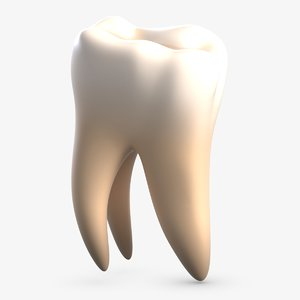 3D tooth 2 model