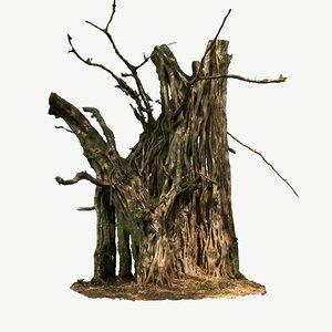 3D scanned tree model
