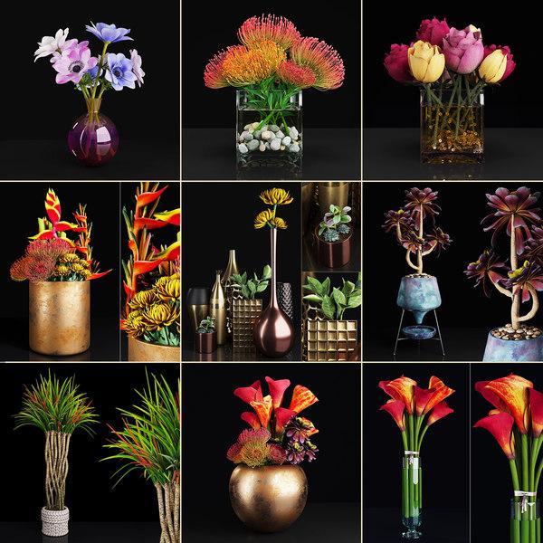 3D plant 2 flowers