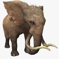 Elephant Animated