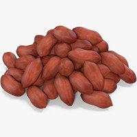 peanuts seed 3D model