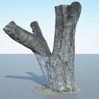 tree trunk - 3D model