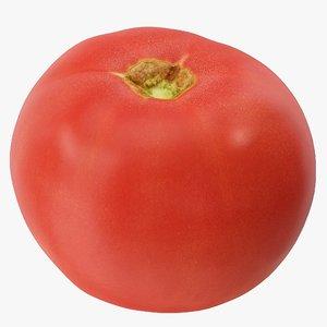 tomato 03 hi polys 3D model