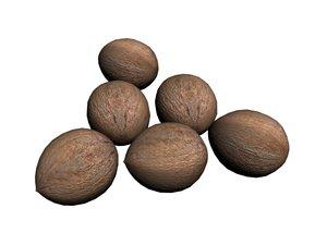coconut 3D
