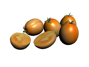 3D persimmon fruit model