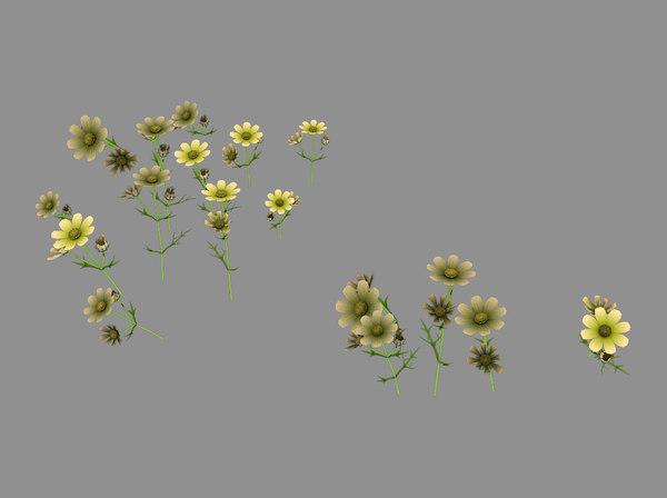 yellow flowers 03 model