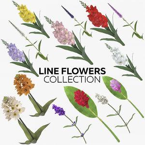 line flowers 3D model