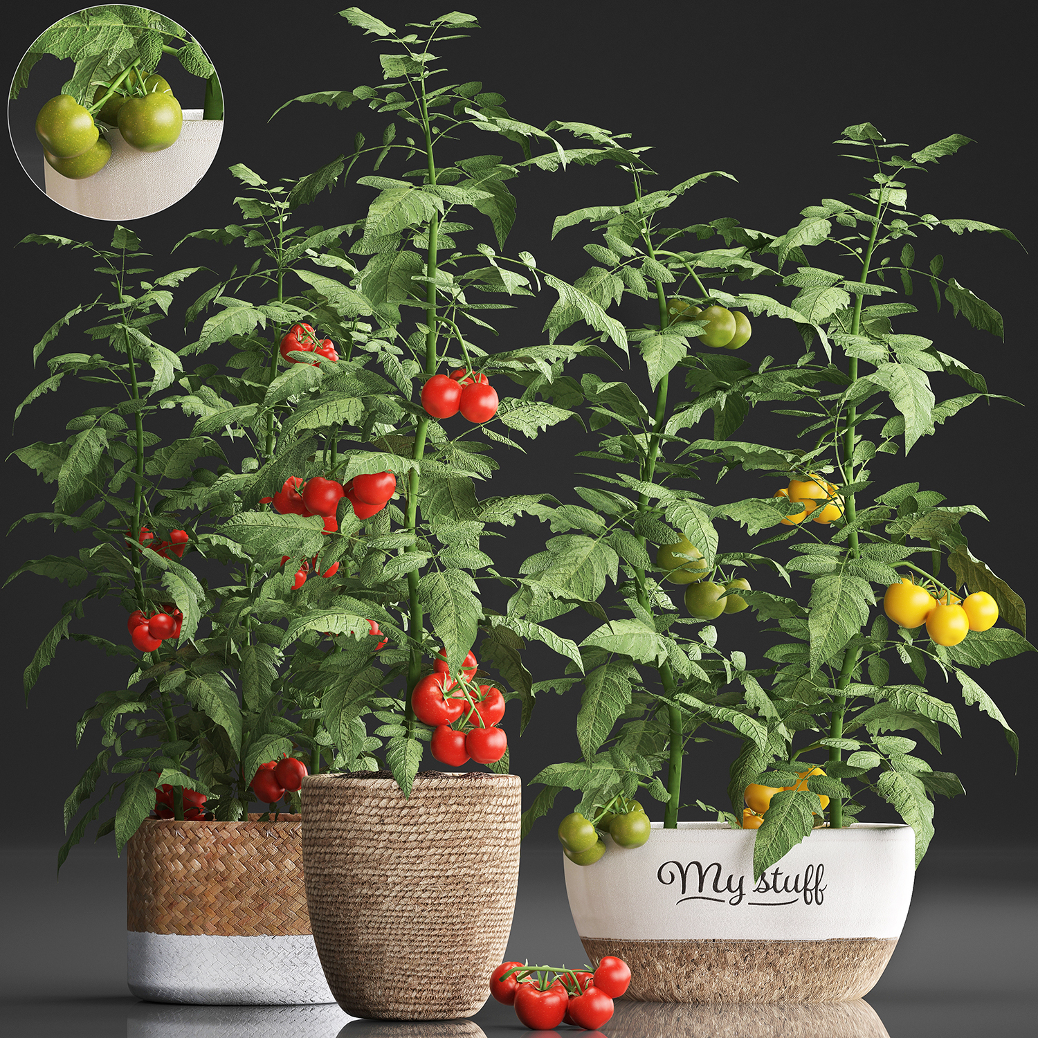 Decorative Plants Kitchen Tomato 3d Turbosquid 1448891