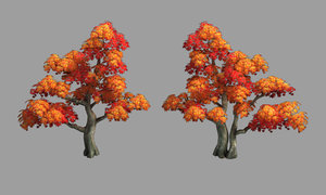 3D forest - maple trees model