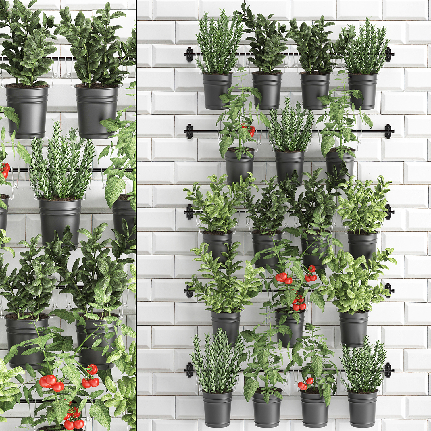 3d Decorative Plants Kitchen Railing Turbosquid 1448942
