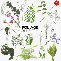 foliage - 32 products 3D