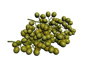 3D green grape model