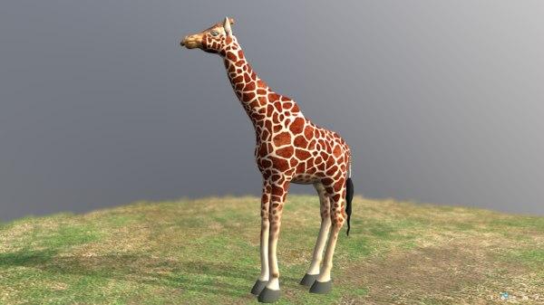 nature animal model