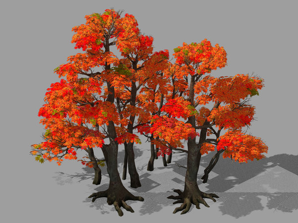 3D model forest - red tree