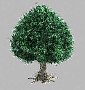 trees - cypress 06 model