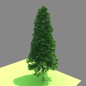 3D model forest - norway spruce
