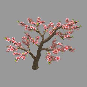 trees - peach 23 3D model