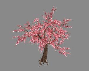 peach tree 68 3D model