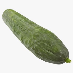 cucumber 03 hi polys 3D