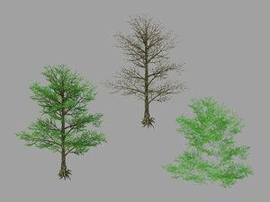 3D moon temple - pine tree