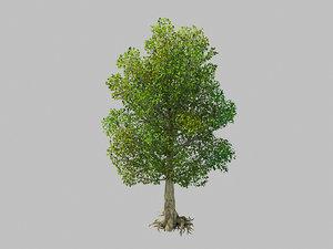 moon temple - tree 3D model