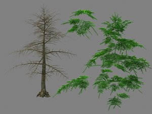 3D model moon temple - pine