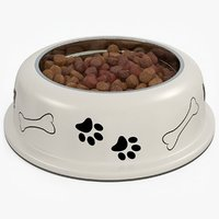 dog bowl food 3D model