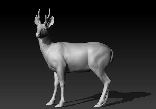deer huemul 3D