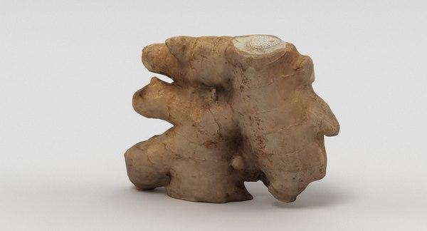 3D scan ginger model