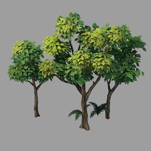 plants - shrubs 58 3D model