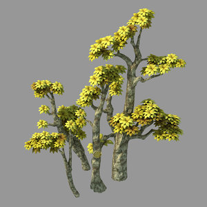 3D plant - poplar 04 model