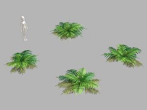 3D weeds - grass 55 model