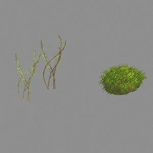 plants - brushwood 03 model