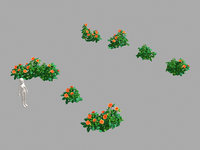 miscellaneous flowers - small model