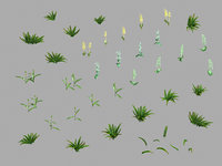 3D miscellaneous flowers - weed