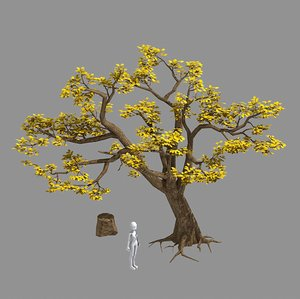 plants - trees 326 3D model