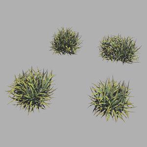 3D plants - weeds 65
