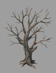 plants - deciduous 68 3D model