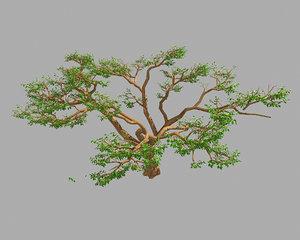 3D plant - green tree